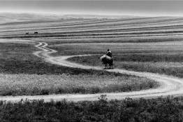 Abbas-Kiarostami-ABBAS-KI-001.jpg